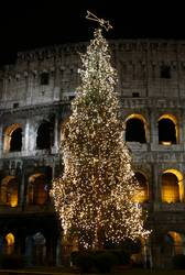 Colosseum in Rome at Christmas