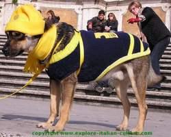 Italian animals