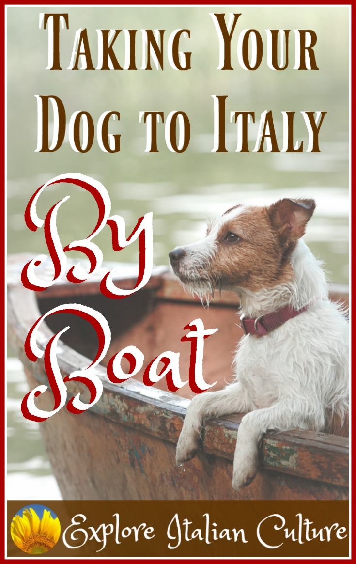 Travelling with your dog in Italy - by sea.