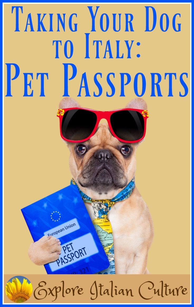 Taking your dog to Italy: the Pet Passport Scheme.