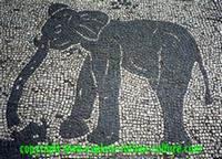 Elephant mosaic from Ostia