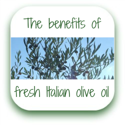 Fresh Italian olive oil benefits link