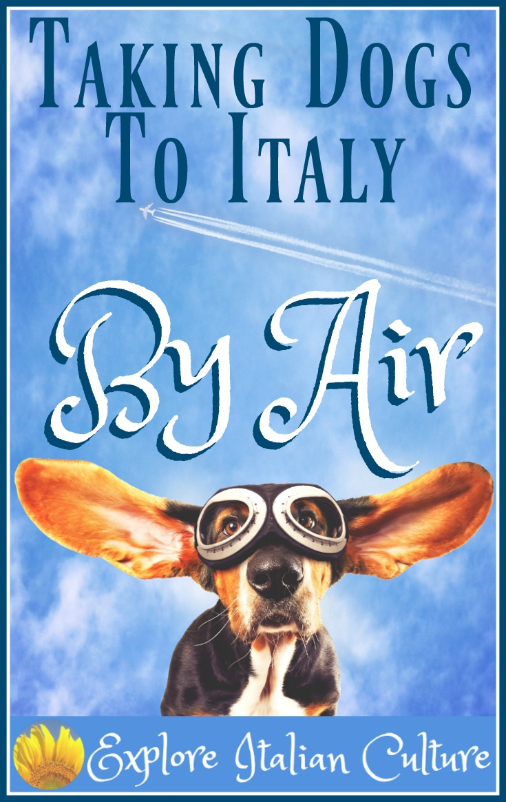 Taking your dog to Italy by air.