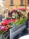Porta Portese market flowers