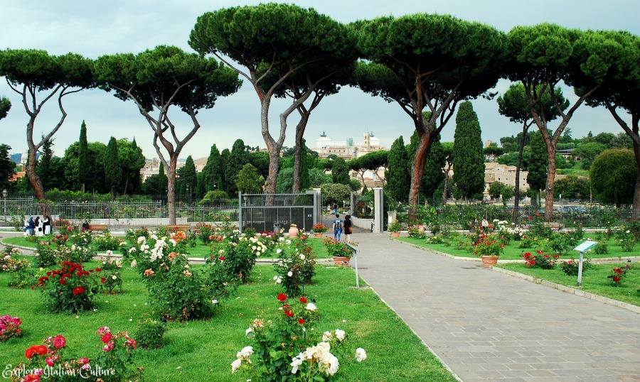 Rome's little-known rose garden.  Beautiful in the Spring.