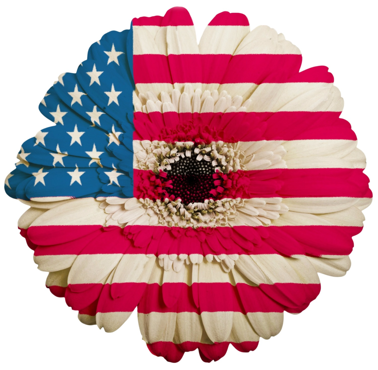 USA flower flag.