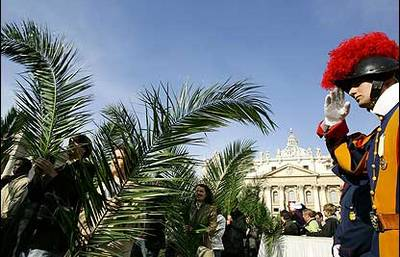 What is Palm Sunday like in Rome