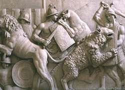 Colosseum animal hunt