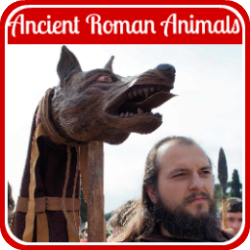 All about Ancient Roman animals - link.