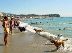 Italy beaches Savona
