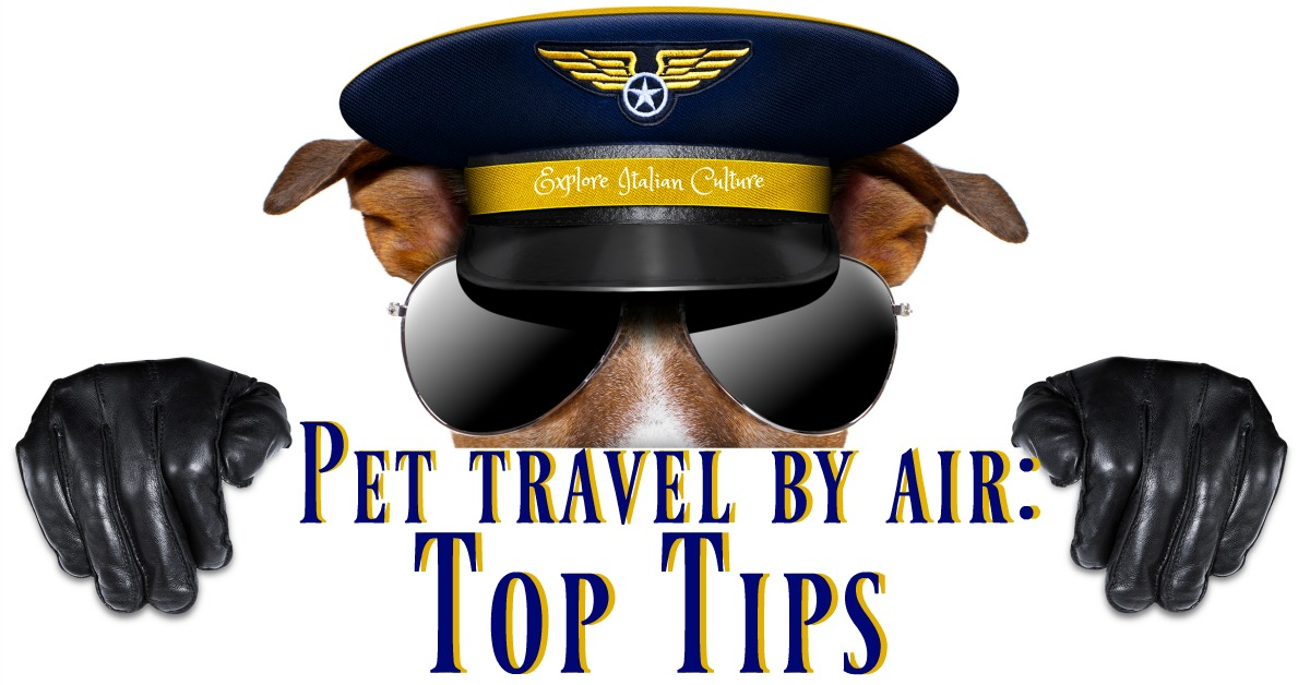 Top Tips for travelling with your pet by air.
