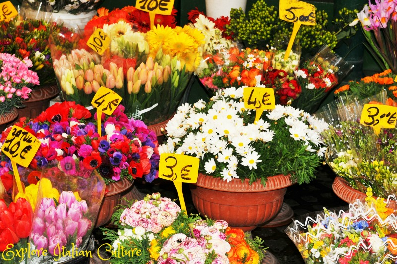 Spring flowers in the Campo de'Fiori market, Rome.