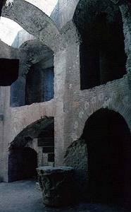 Colosseum gladiator pens