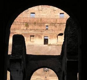 Colosseum of Rome Ancient Roman animals