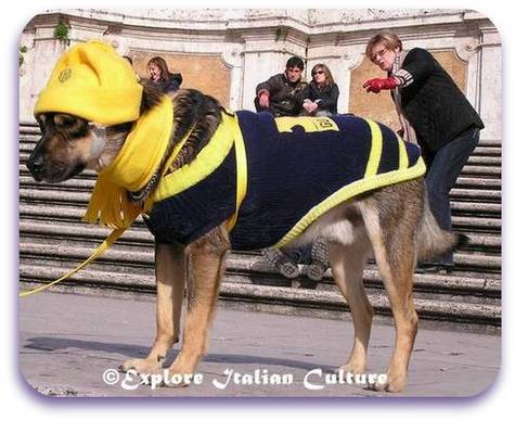 Dog dressed for winter on the Spanish Steps, Rome, Italy.